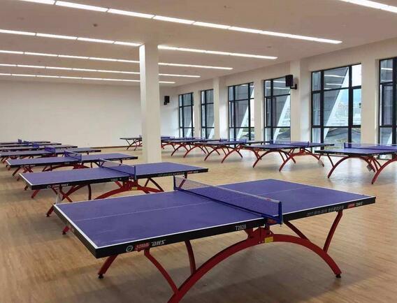 乒乓球场馆木地板