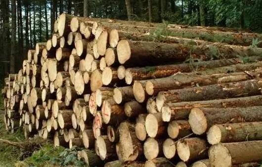 季节的湿度变化是如何影响木材的