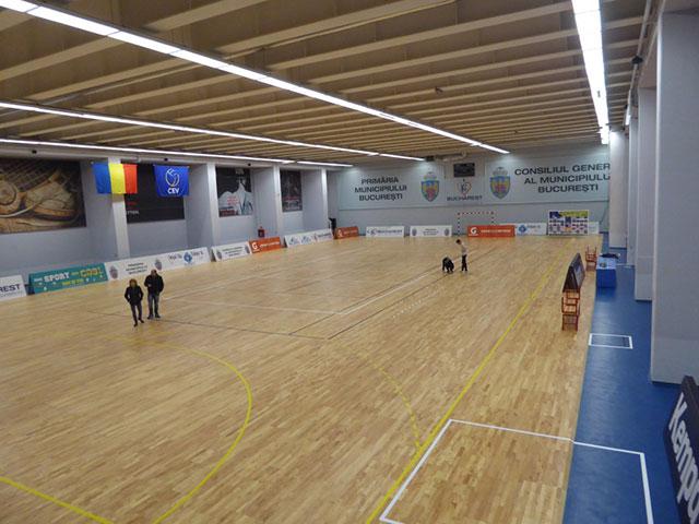篮球木地板结构,运动木地板结构,体育木地板结构