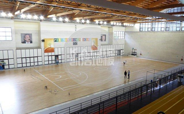 运动地板高峰论坛,共谋地板铺装大业——体育运动地板价格