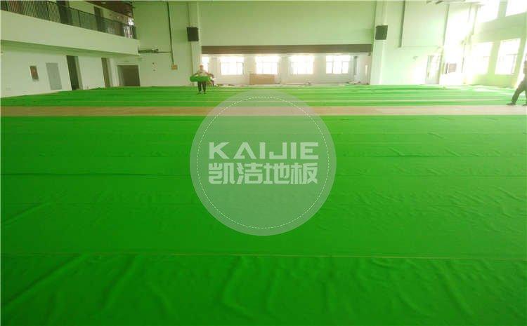 山东菏泽小学体育馆运动js33333项目图片