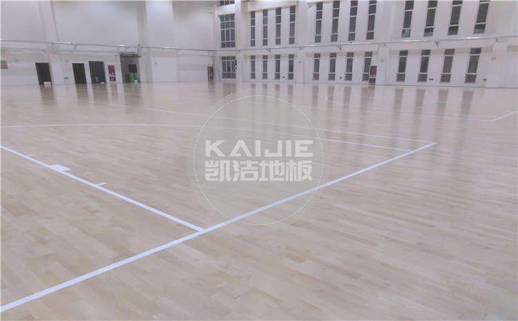 山东济南大学体育馆运动js33333案例图片
